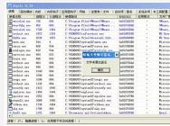 计算机病毒常用分析方法
