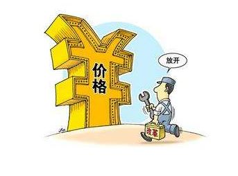 """刘满平:能源价格领域也需""""结构性改革"""" - 企业cio访谈"""