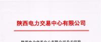 《陕西电力市场售电公司履约保函管理办法(试行)》的通知