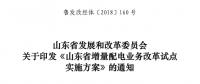 山东省增量配电业务改革试点实施方案印发:确定6个区域开展增量配电业务改革试点