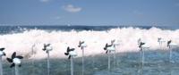 """""""海马""""项目旨在利用海洋运动发电"""