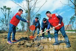 阜南供电:环保植树添新绿