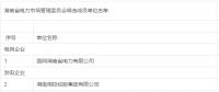 湖南省电力市场管理委员会候选成员单位公示名单:33家售电公司入列