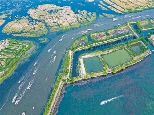 白洋淀水域生态修复示范项目启动环保上市公司布局雄安新区
