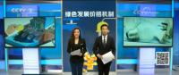 央视评新政丨峰谷价差拉大对电力市场和储能的影响