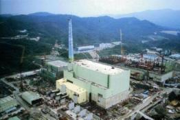 """真要用爱发电?台湾主管部门被传将贱卖""""核四""""燃料棒"""