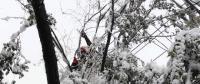 新疆乌鲁木齐暴雪致17条配网线路停电