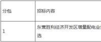 东营胜利经济开发区增量配电业务试点项目业主优选中标公告
